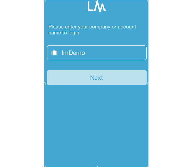 Example Mobile Log-In